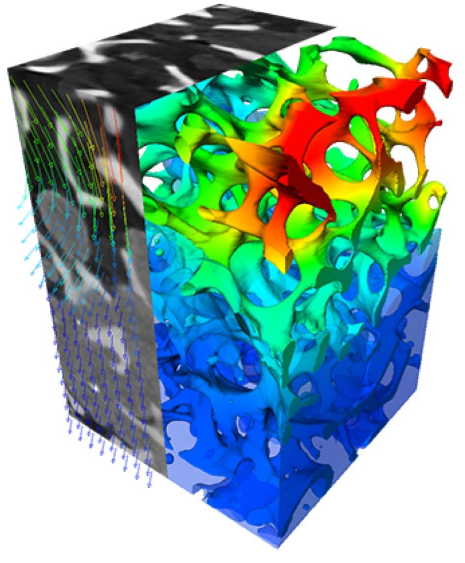 4D tomography